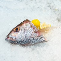 White Snapper Fish Head (Ang Go Li) 白鲷鱼头