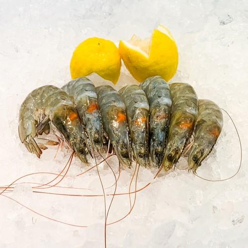 Glass Prawns 玻璃虾