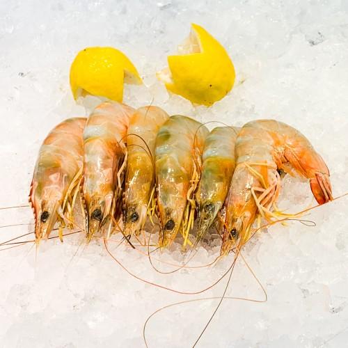 Ang Ka Prawns (Sea Prawns) 海虾