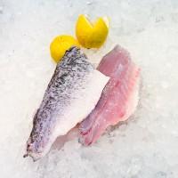 Asian Sea Bass Fillet 海鲈鱼片