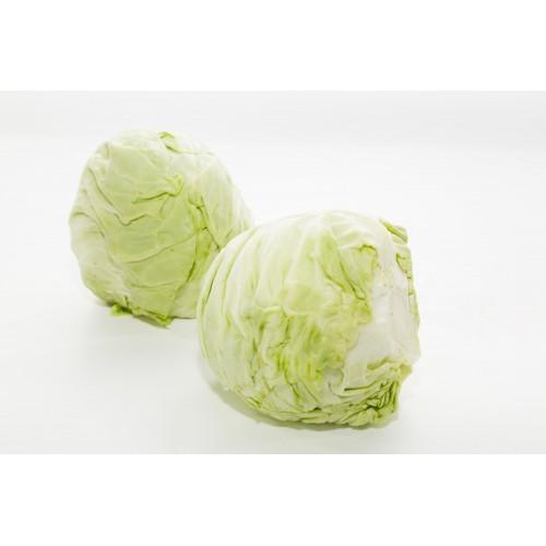 Beijing Cabbage 卷心菜