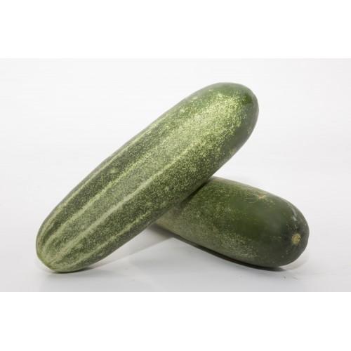 Cucumber 黄瓜