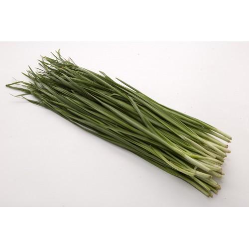 Chives Ku Chai 韭菜