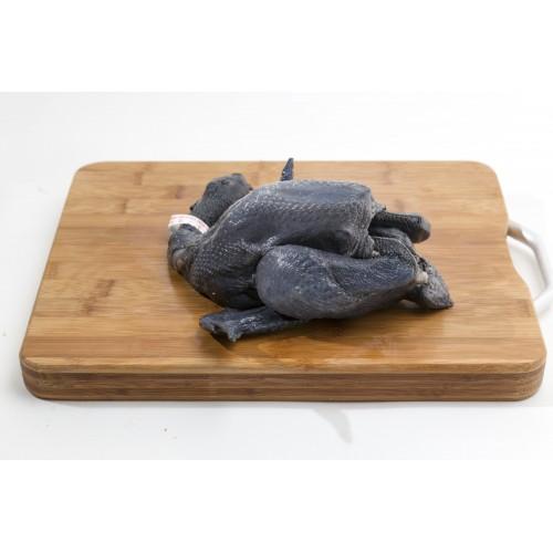 Black Chicken 黑鸡